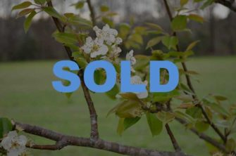 summerall_sold